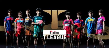 ノジマTリーグ 2018-2019シーズン